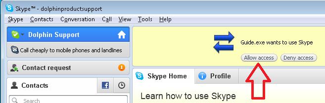 Skype Screenshot. Allow Access indicated with an Arrow.