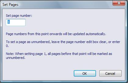 Image starts. Image of EasyConverter v5.05's Set Page dialog box. Image ends.